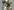 односторонний ламинатор Tecnomac DIGIT 76 (2010 год)